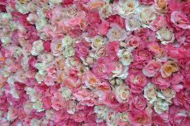 Flower Wall Backgrounds For Flower Wall Backgrounds Www8backgroundscom
