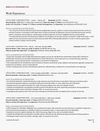 Resume Writing Services Reviews Template Classic Executive