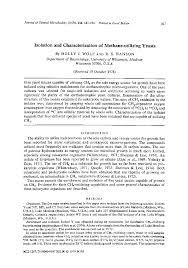 characterization essay examples co characterization essay examples