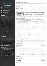 Resume Standard Resumet Sample Template Pdf For It