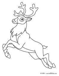 Small Picture Reindeer coloring pages Hellokidscom