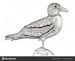 ベクトルの大人のための塗り絵の鳥カモメ ストックベクター