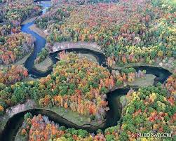 Manistee River Flow Chart The Manistee River Winding Through The Lovely Fall Colors Of