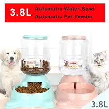 best outdoor automatic pet feeder top for supplies best outdoor automatic