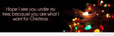 Christmas Tree Quotes Extraordinary Best Merry Christmas Tree Quotes Images 48