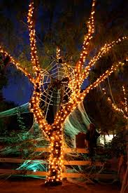 outdoor tree lighting ideas. 120 Best Colorful Halloween Images On Pinterest Outdoor Tree  Lights Outdoor Tree Lighting Ideas