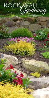 Small Picture 25 best Rock wall gardens ideas on Pinterest Rock wall Garden