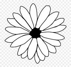 clipart daisy outline vector black white flower