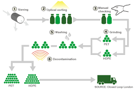 Graphic Of Recycling Process Paper Recycling Process