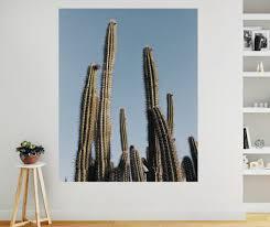 desert cactus wall mural on cactus wall art nz with desert cactus wall mural your decal shop nz designer wall art