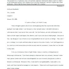 Good Introduction To An Essay Example Examples Of Good Introductions
