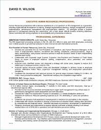 Credit Analyst Resume Example Financial Analyst Resume Sample Lovely 24 Awesome Credit Analyst