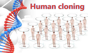 cloning humans essay ethics use and playing god