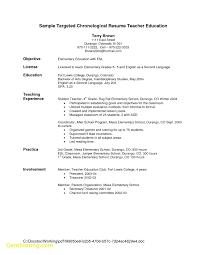 Inspirational Resume Template Google Docs Free Best Templates