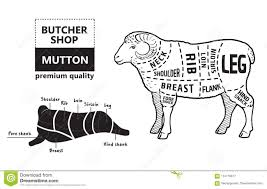 Lamb Or Mutton Cuts Diagram Butcher Shop Stock Vector