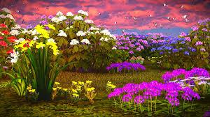 3d hd wallpapers flowers. Wonderful Flowers Wallpapers Phlox Narcissus Butterflies Flowers 3D_Graphics On 3d Hd E