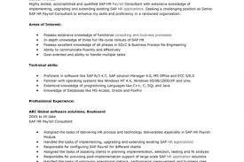 sap hr payroll consultant resume sample resumes design sap hr payroll consultant resume