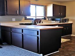 Blue Paint For Kitchen Painting Kitchen Cabinets Dark Blue Cliff Kitchen