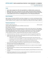 How To Make A Really Good Resume What Is The Best Format For A Resume In 2018 Here Are 3