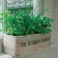 outdoor herb garden kit. Contemporary Kit Unwins Mediterranean Kitchen Garden Herb Kit To Outdoor G