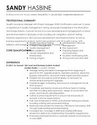 Transform Qa Resume Professional Summary Also Software Resume