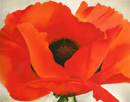 com red poppy o keeffe canvas or wall art print posters prints