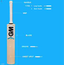 How To Choose A Cricket Bat Cricket Buyers Guide