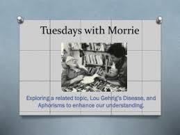 morrie essays tuesdays morrie essays