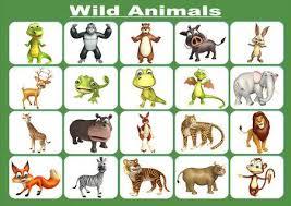 wild animals chart. Unique Animals 3d Rendered Illustration Of Wild Animal Chart Stock Illustration  53362761 On Wild Animals Chart H