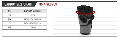 Mma Gloves Size Chart Bad Boy Mens Legacy Prime Mma Gloves Grey White Small