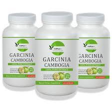 Garcinia Cambogia Herbs Capsules 3 Bottles