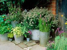 Herb Container Planting Ideas 13 Photos