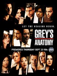 Grey's Anatomy SAISON 12 FRENCH