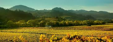 Discover Fair Play & the Sierra Foothills AVA - Priority Wine Pass