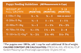 Puppy Feeding Chart 25 Methodical Puppies Diet Chart