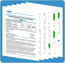 expert gmat gre awa essay raters awa professor awa essay rater report sample 1