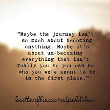 Life Is A Journey Quotes Adorable Spiritual Quotes About Life Journey Quotesta