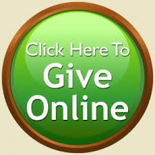 Image result for give online button