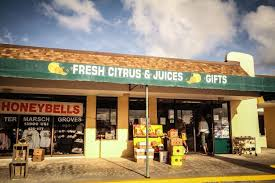 the termarsch family have been local entrepreneurs for decades originally from pontiac michigan they relocated to south florida in the early 1950 s