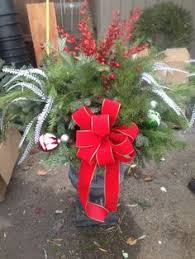 Sherwood Forest Garden Center In Rochester MI 48306  MLivecomSherwood Forest Christmas Trees