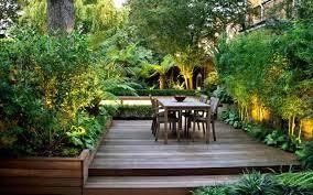 garden screening ideas the 25 best