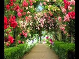 Small Picture Rose garden design ideas YouTube