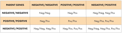 parent blood types chart negative positive chart 1 jpg