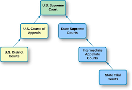 United States Court System Flow Chart The Dual Court System American Government