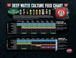 Best Nutrients For Dwc Magewebin Com