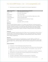 Sample Resume Format For Experienced Resume Example