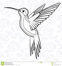 Colibri или колибри для логотипа значка футболки талисмана