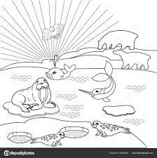 Kleurplaat Noordelijke Landschap Met Verschillende Polar Dieren