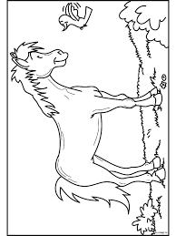 Kleurplaat Paard Met Vogel Kleurplatennl Zoë Haar Bord