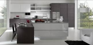 Modern Kitchen Cabinets Modern Kitchen Design Ideas